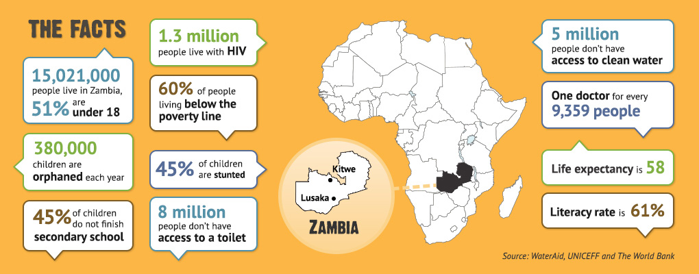 VisionZambia: The facts